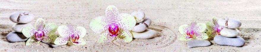 Изображение для стеклянного кухонного фартука, скинали: цветы, орхидеи, камни, fartux1020