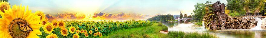 Изображение для стеклянного кухонного фартука, скинали: цветы, подсолнухи, река, fartux1028