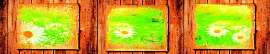 Изображение для стеклянного кухонного фартука, скинали: цветы, коллаж, ромашки, fartux1030