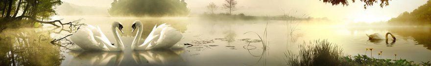 Изображение для стеклянного кухонного фартука, скинали: озеро, птицы, лебеди, fartux1115