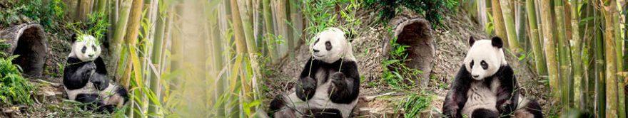 Изображение для стеклянного кухонного фартука, скинали: бамбук, животные, панда, fartux1153