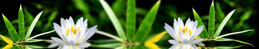 Изображение для стеклянного кухонного фартука, скинали: цветы, лотос, fartux1157