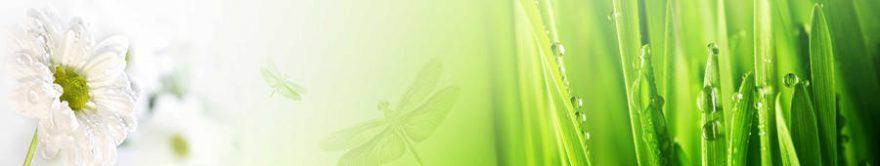 Изображение для стеклянного кухонного фартука, скинали: цветы, трава, роса, fartux1164
