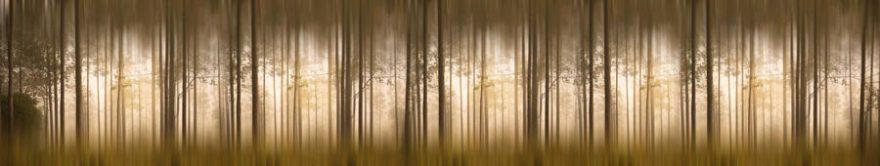 Изображение для стеклянного кухонного фартука, скинали: лес, fartux1229
