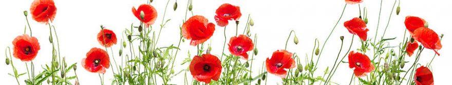 Изображение для стеклянного кухонного фартука, скинали: цветы, маки, fartux1294