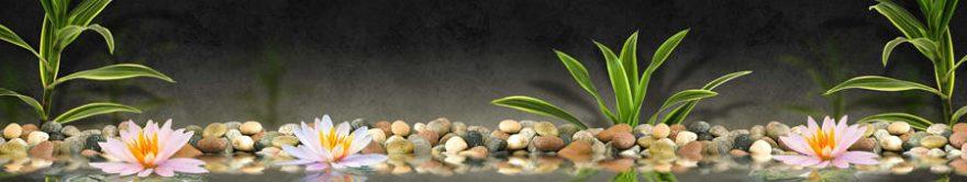 Изображение для стеклянного кухонного фартука, скинали: цветы, камни, лотос, fartux1300