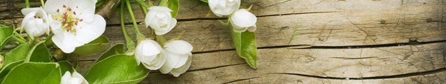 Изображение для стеклянного кухонного фартука, скинали: цветы, текстура, яблоня, fartux1327