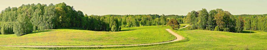 Изображение для стеклянного кухонного фартука, скинали: поле, природа, лес, fartux1339