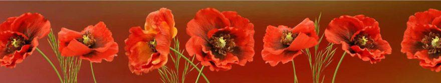Изображение для стеклянного кухонного фартука, скинали: цветы, маки, fartux1369