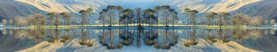 Изображение для стеклянного кухонного фартука, скинали: деревья, fartux1490