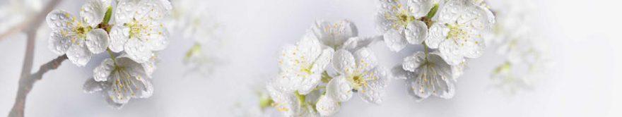Изображение для стеклянного кухонного фартука, скинали: цветы, яблоня, fartux1498