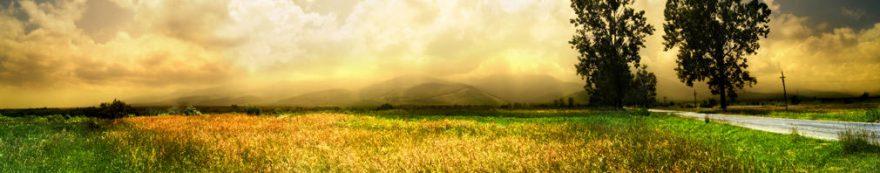 Изображение для стеклянного кухонного фартука, скинали: поле, природа, дорога, fartux1667