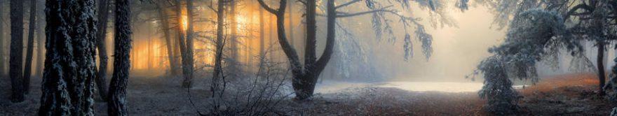 Изображение для стеклянного кухонного фартука, скинали: деревья, лес, fartux1742