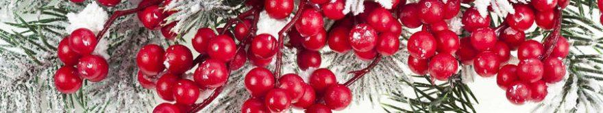Изображение для стеклянного кухонного фартука, скинали: ягоды, ветки, fartux1745