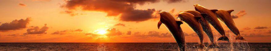 Изображение для стеклянного кухонного фартука, скинали: закат, море, дельфины, fartux1756