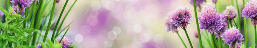 Изображение для стеклянного кухонного фартука, скинали: цветы, трава, fartux1766