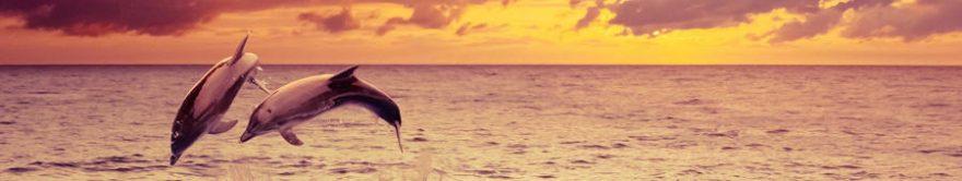 Изображение для стеклянного кухонного фартука, скинали: море, дельфины, fartux1787