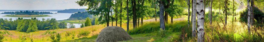 Изображение для стеклянного кухонного фартука, скинали: природа, холм, деревья, лес, fartux1843
