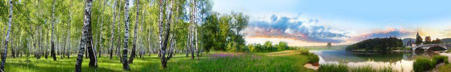 Изображение для стеклянного кухонного фартука, скинали: природа, деревья, лес, река, fartux1844