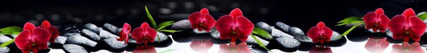 Изображение для стеклянного кухонного фартука, скинали: цветы, орхидеи, камни, fartux574