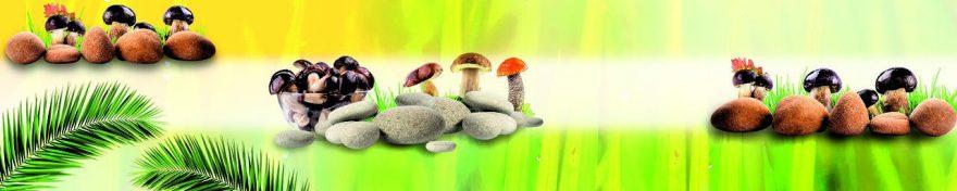Изображение для стеклянного кухонного фартука, скинали: камни, грибы, fartux585
