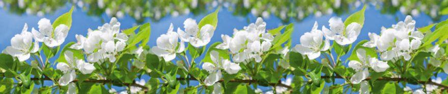 Изображение для стеклянного кухонного фартука, скинали: цветы, яблоня, fartux617