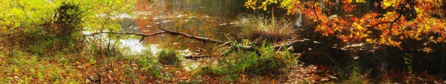 Изображение для стеклянного кухонного фартука, скинали: трава, листья, осень, fartux635