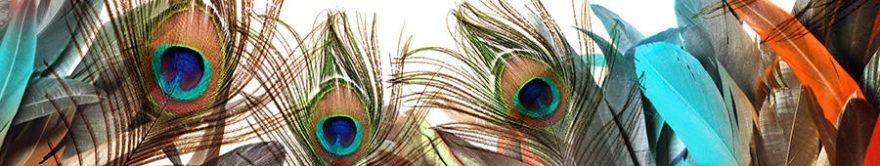 Изображение для стеклянного кухонного фартука, скинали: перья, fartux640