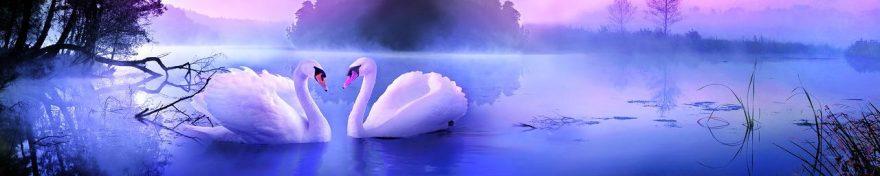 Изображение для стеклянного кухонного фартука, скинали: птицы, лебеди, fartux697