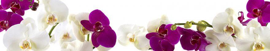 Изображение для стеклянного кухонного фартука, скинали: цветы, орхидеи, fartux757