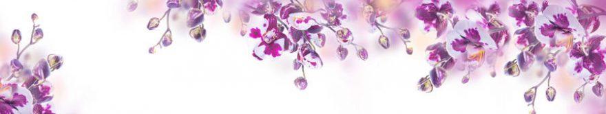 Изображение для стеклянного кухонного фартука, скинали: цветы, орхидеи, fartux811