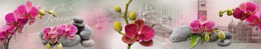 Изображение для стеклянного кухонного фартука, скинали: цветы, орхидеи, камни, италия, fartux879