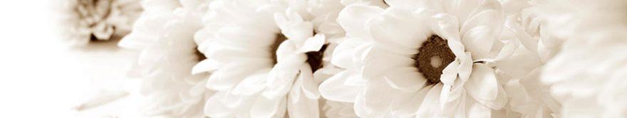Изображение для стеклянного кухонного фартука, скинали: цветы, fartux880