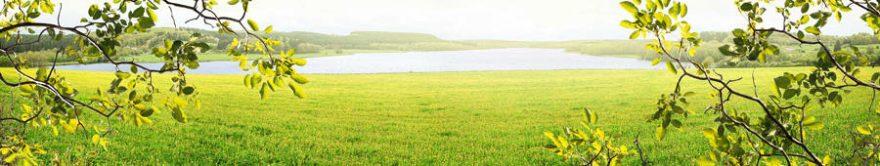 Изображение для стеклянного кухонного фартука, скинали: поле, природа, озеро, ветки, fartux885
