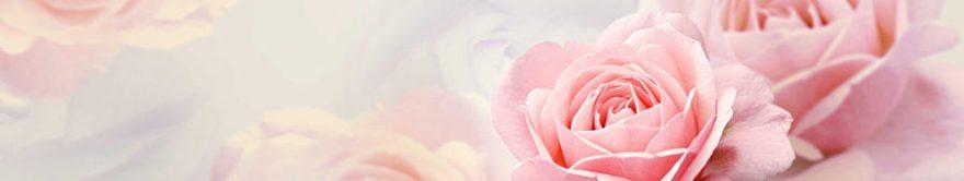 Изображение для стеклянного кухонного фартука, скинали: цветы, розы, fartux919