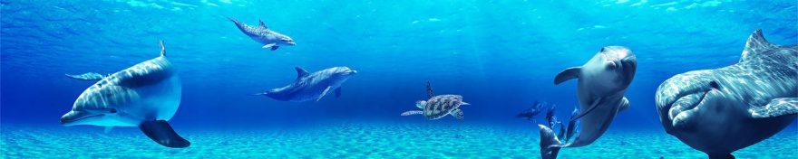 Изображение для стеклянного кухонного фартука, скинали: подводный мир, дельфины, fartux962