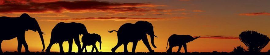 Изображение для стеклянного кухонного фартука, скинали: закат, небо, животные, слоны, jivdiki003