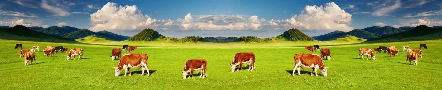 Изображение для стеклянного кухонного фартука, скинали: поле, холм, облака, животные, коровы, jivdoma004