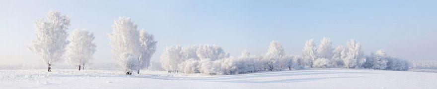 Изображение для стеклянного кухонного фартука, скинали: природа, зима, снег, лес, polholm004