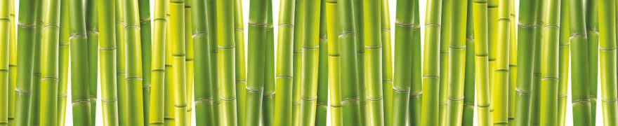 Изображение для стеклянного кухонного фартука, скинали: бамбук, паттерн, rastcve001