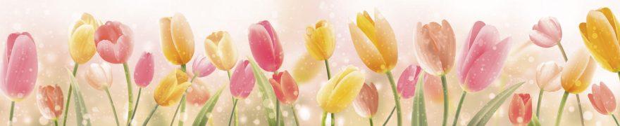Изображение для стеклянного кухонного фартука, скинали: цветы, тюльпаны, rastcve025