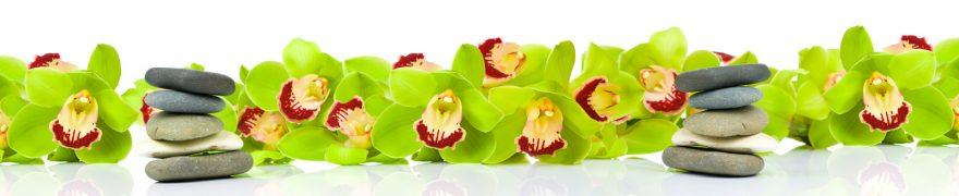 Изображение для стеклянного кухонного фартука, скинали: цветы, орхидеи, камни, rastcve035