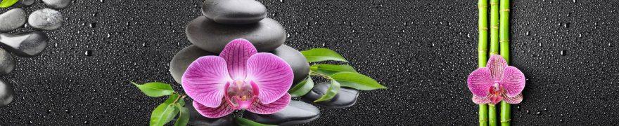 Изображение для стеклянного кухонного фартука, скинали: цветы, бамбук, орхидеи, камни, rastcve040