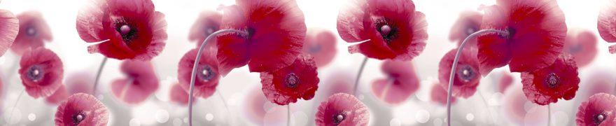 Изображение для стеклянного кухонного фартука, скинали: цветы, маки, rastcve048