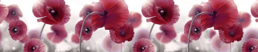 Изображение для стеклянного кухонного фартука, скинали: цветы, маки, rastcve049