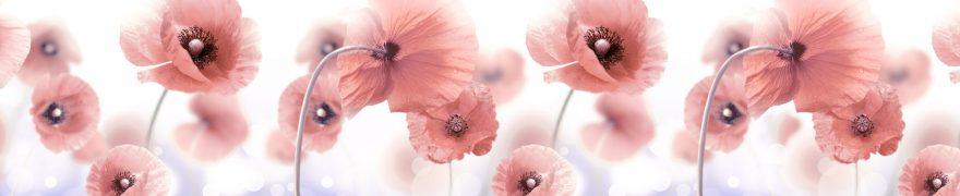 Изображение для стеклянного кухонного фартука, скинали: цветы, маки, rastcve051