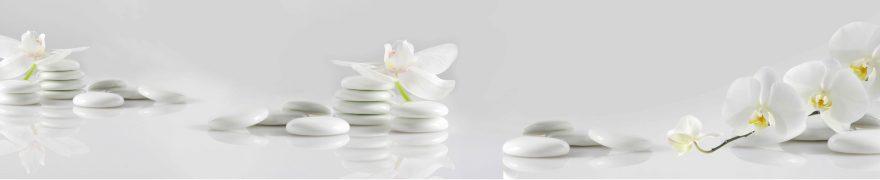 Изображение для стеклянного кухонного фартука, скинали: цветы, орхидеи, камни, rastcve055