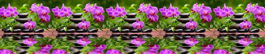 Изображение для стеклянного кухонного фартука, скинали: цветы, орхидеи, камни, rastcve069