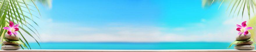 Изображение для стеклянного кухонного фартука, скинали: цветы, орхидеи, небо, камни, море, rastcve078