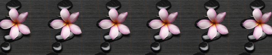Изображение для стеклянного кухонного фартука, скинали: цветы, камни, rastcve082